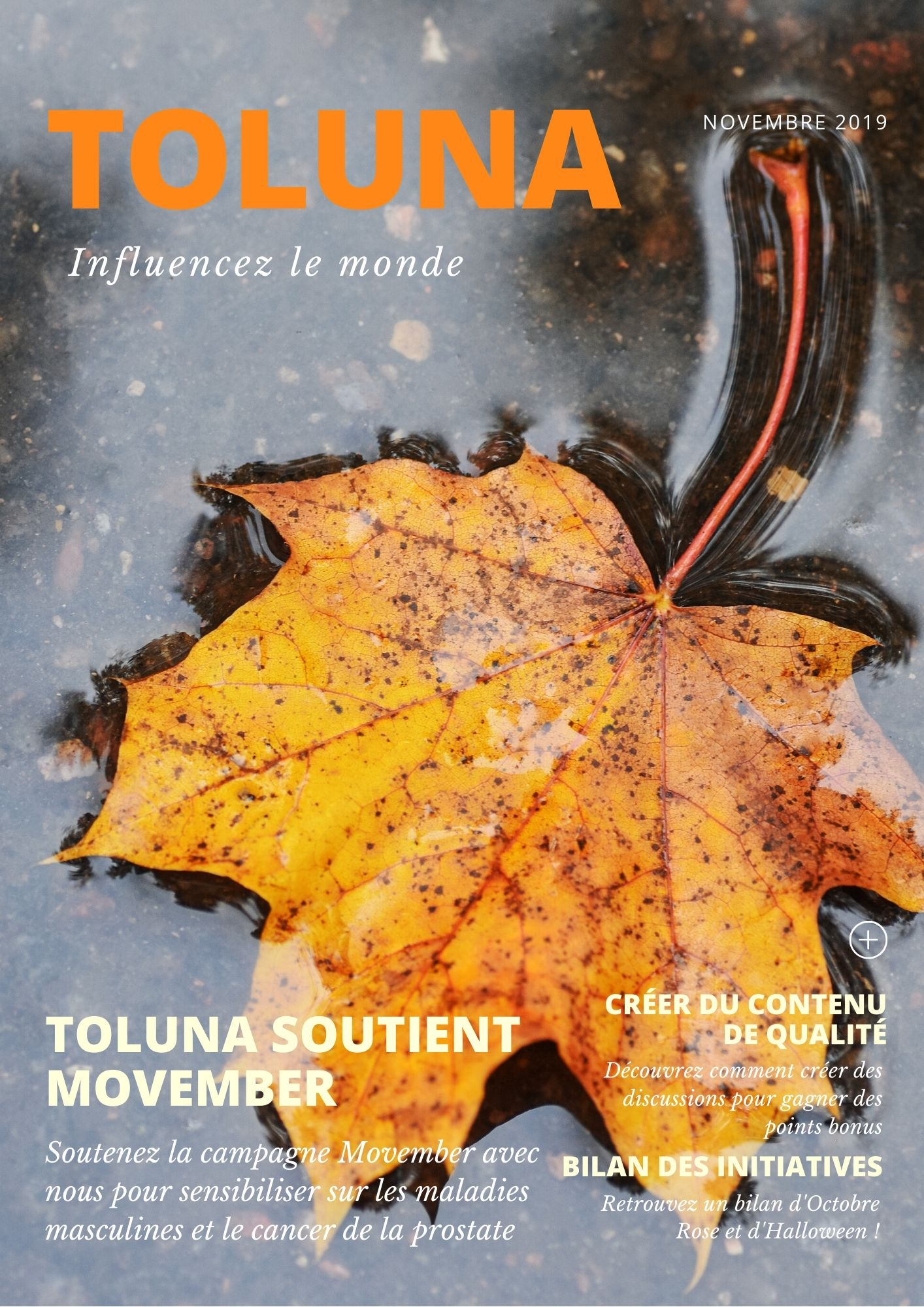 FR Toluna News - Nov 2.jpg